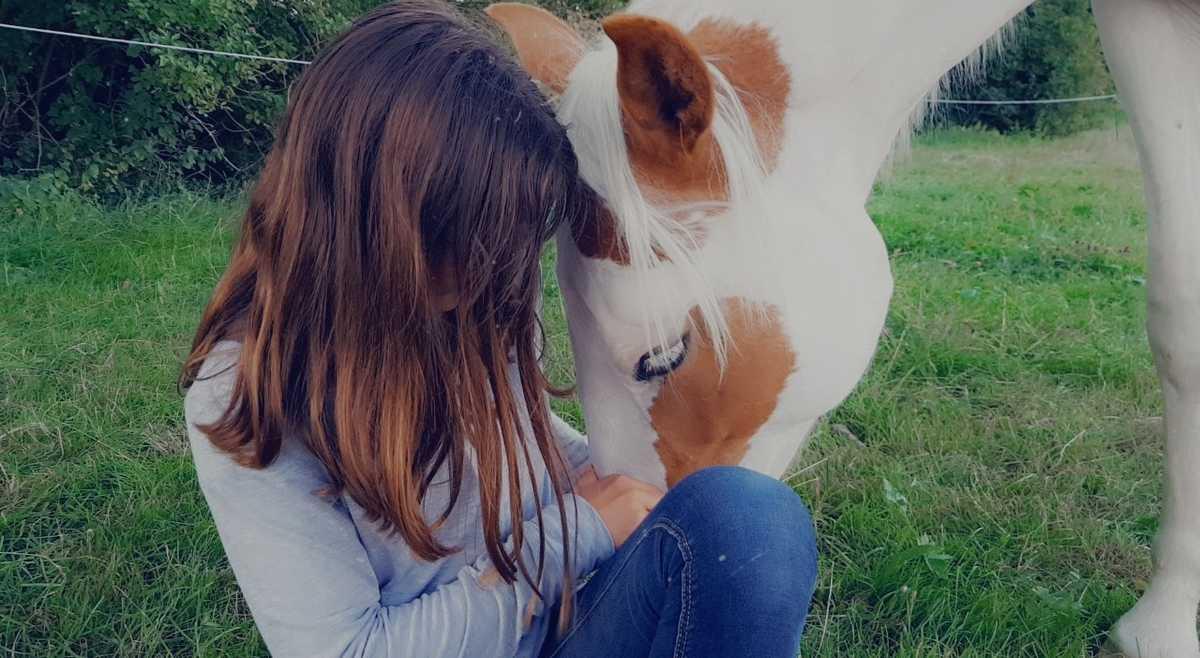 deroulement-seance-mediation-equine-equitherapie-bienveillance