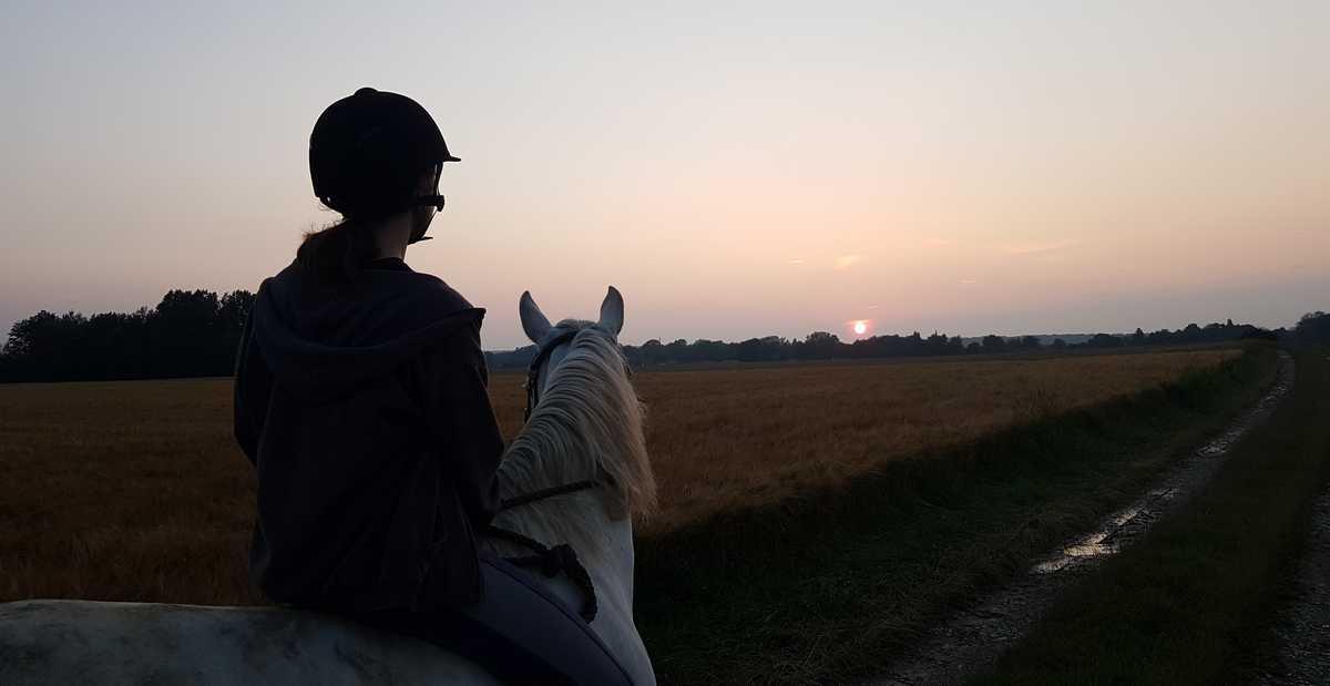 mediation-equine-bien-etre-portage-instant-présent- coucher-soleil