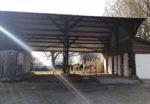 mediation-equine-lieu-ressource-paddock-st omer