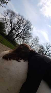 therapie-avec-le-cheval-equitherapie-mediation-equine-lacher-prise