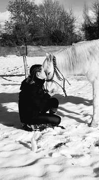 therapie-avec-le-cheval-equitherapie-mediation-equine-tendresse-prince