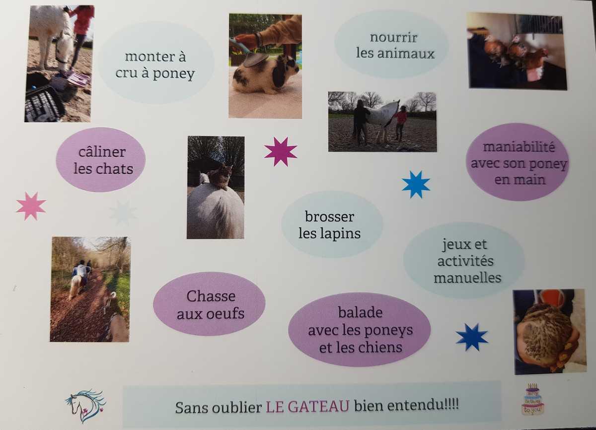anniversaire-animaux-ferme-pedagogique-poneys-chevaux